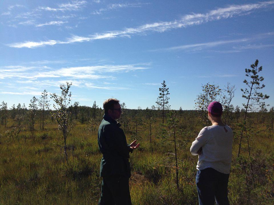 Maaseutu- ja erävihreät ry:n kannanotto turvesoiden ja ojitettujen soiden ennallistamisesta